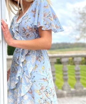 Blue Butterfly & Robin Dummy Wrap Dress