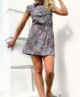 Sage & Tan Paisley Collared Mini Dress